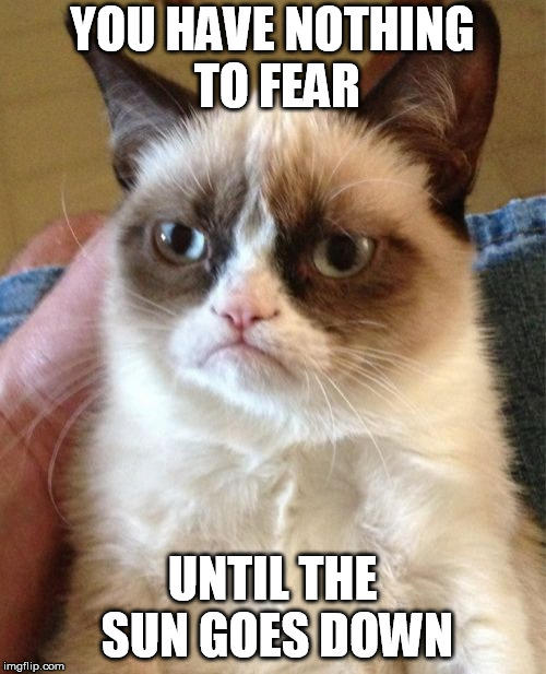 Grumpy Cat Meme | YOU HAVE NOTHING TO FEAR UNTIL THE SUN GOES DOWN | image tagged in memes,grumpy cat | made w/ Imgflip meme maker