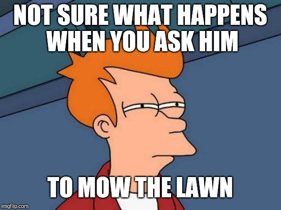 Futurama Fry Meme | NOT SURE WHAT HAPPENS WHEN YOU ASK HIM TO MOW THE LAWN | image tagged in memes,futurama fry | made w/ Imgflip meme maker