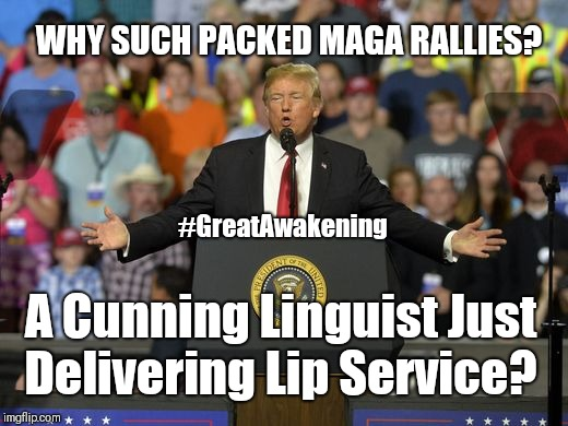 Why such packed MAGA Rallies? A Cunning Linguist Just Delivering Lip Service? #QAnon Stormy? #TheStorm #GreatAwakening #WINNING  | WHY SUCH PACKED MAGA RALLIES? A Cunning Linguist Just Delivering Lip Service? #GreatAwakening | image tagged in funny memes,donald trump approves,make america great again,full house,guinness world record,winning | made w/ Imgflip meme maker