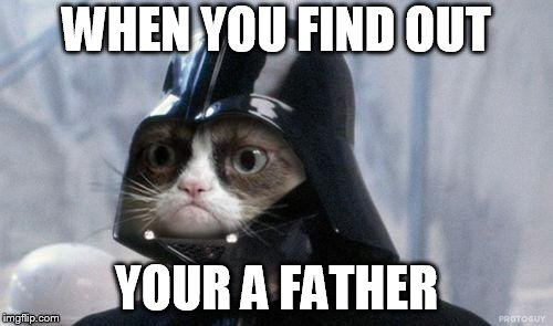 Grumpy Cat Star Wars Meme | WHEN YOU FIND OUT YOUR A FATHER | image tagged in memes,grumpy cat star wars,grumpy cat | made w/ Imgflip meme maker
