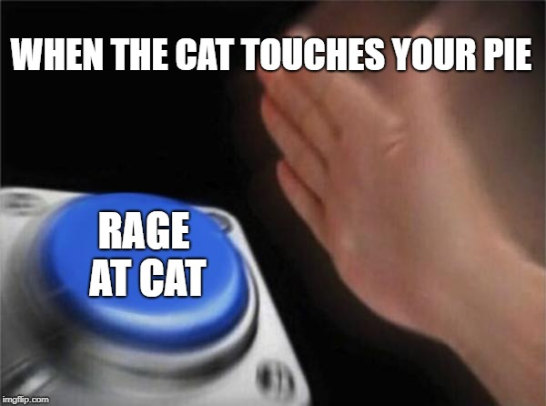 Blank Nut Button Meme | WHEN THE CAT TOUCHES YOUR PIE RAGE AT CAT | image tagged in memes,blank nut button | made w/ Imgflip meme maker