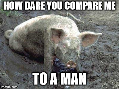 Pig in Mud | HOW DARE YOU COMPARE ME TO A MAN | image tagged in pig in mud | made w/ Imgflip meme maker