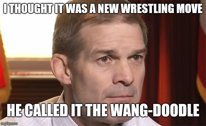 I THOUGHT IT WAS A NEW WRESTLING MOVE HE CALLED IT THE WANG-DOODLE | image tagged in jim jordan | made w/ Imgflip meme maker