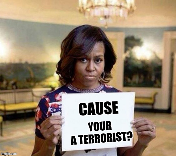 Michael Obama | CAUSE YOUR A TERRORIST? | image tagged in michael obama | made w/ Imgflip meme maker
