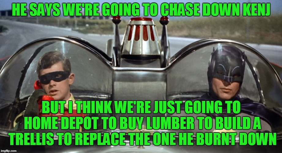HE SAYS WE'RE GOING TO CHASE DOWN KENJ BUT I THINK WE'RE JUST GOING TO HOME DEPOT TO BUY LUMBER TO BUILD A TRELLIS TO REPLACE THE ONE HE BUR | made w/ Imgflip meme maker