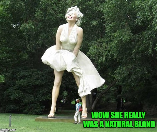 marilyn monroe   | WOW SHE REALLY WAS A NATURAL BLOND | image tagged in marilyn monroe,statue,blond | made w/ Imgflip meme maker