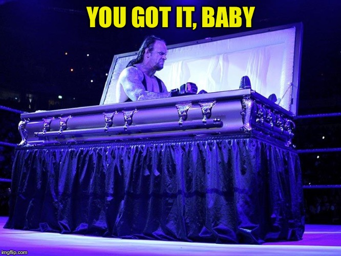 Undertaker in coffin | YOU GOT IT, BABY | image tagged in undertaker in coffin | made w/ Imgflip meme maker