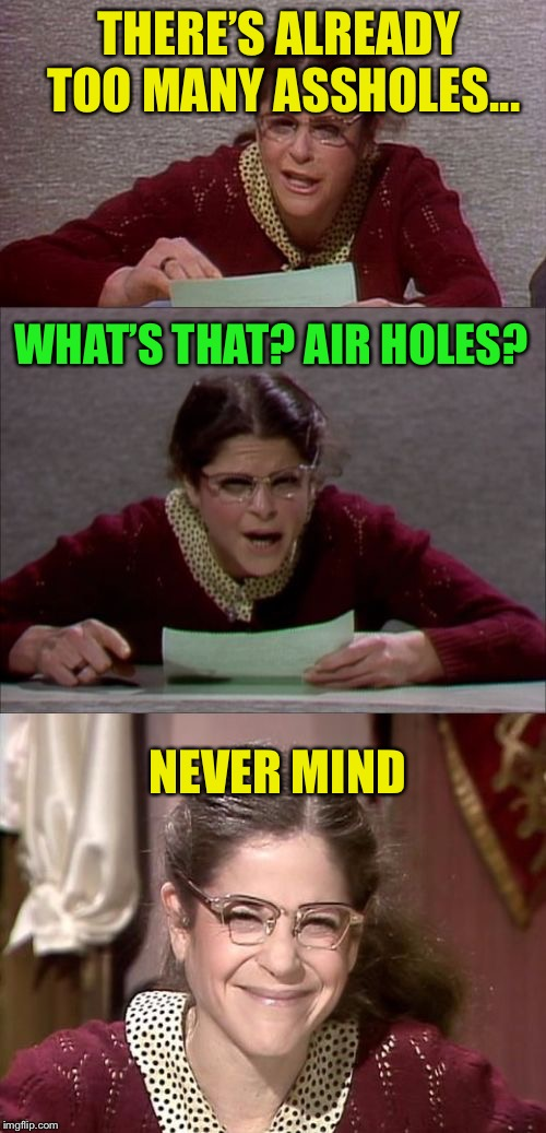 Bad Pun Gilda Radner playing Emily Litella | THERE'S ALREADY TOO MANY ASSHOLES... NEVER MIND WHAT'S THAT? AIR HOLES? | image tagged in bad pun gilda radner playing emily litella | made w/ Imgflip meme maker