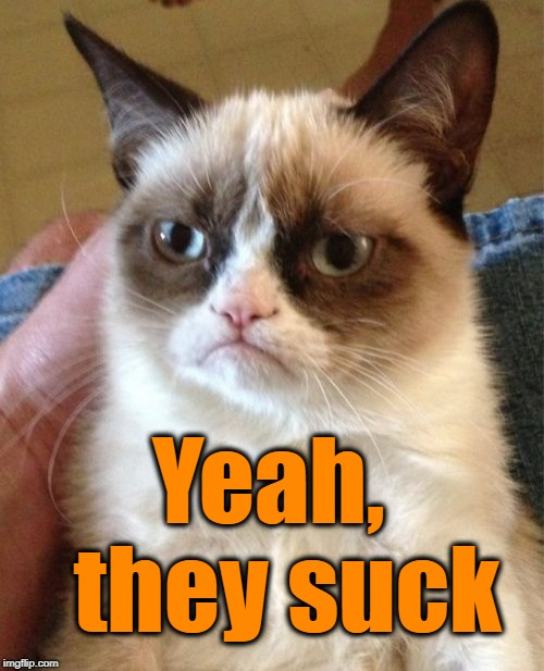 Grumpy Cat Meme | Yeah,  they suck | image tagged in memes,grumpy cat | made w/ Imgflip meme maker
