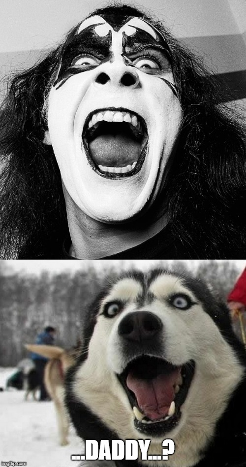 ...DADDY...? | image tagged in memes,funny memes,gene simmons,kiss,husky | made w/ Imgflip meme maker
