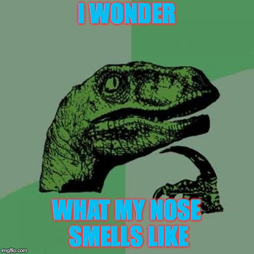 Hmmmmmmmmmm... | I WONDER WHAT MY NOSE SMELLS LIKE | image tagged in memes,philosoraptor,interesting question,can you smell yours,is it possible,hmmm | made w/ Imgflip meme maker