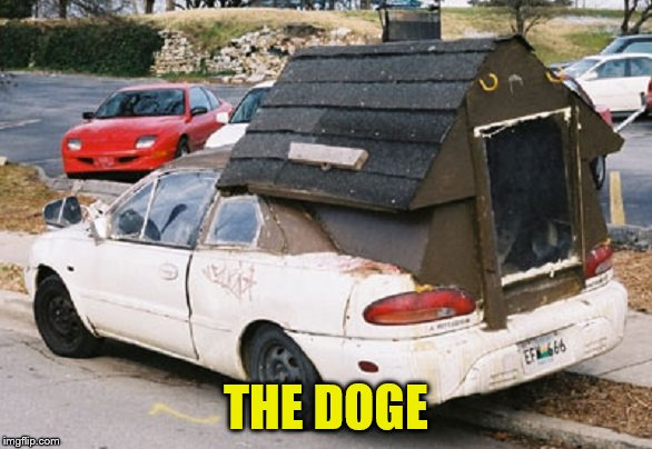 THE DOGE | made w/ Imgflip meme maker