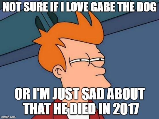 RIP Gabe | NOT SURE IF I LOVE GABE THE DOG OR I'M JUST SAD ABOUT THAT HE DIED IN 2017 | image tagged in memes,futurama fry,gabe the dog | made w/ Imgflip meme maker