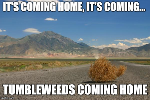 tumbleweed | IT'S COMING HOME, IT'S COMING... TUMBLEWEEDS COMING HOME | image tagged in tumbleweed | made w/ Imgflip meme maker