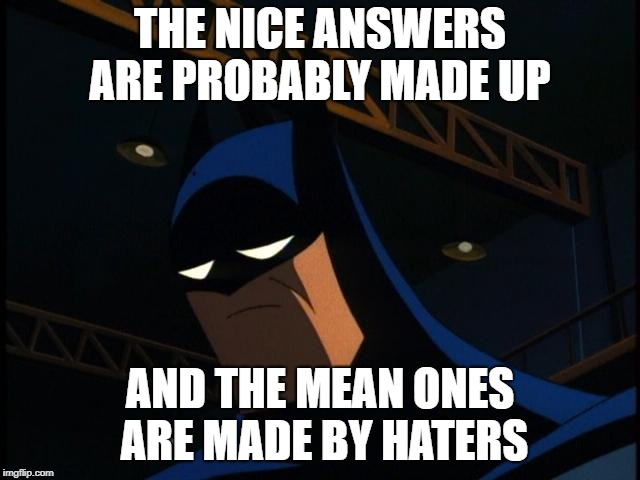 Sad Batman | THE NICE ANSWERS ARE PROBABLY MADE UP AND THE MEAN ONES ARE MADE BY HATERS | image tagged in sad batman | made w/ Imgflip meme maker