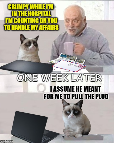 Harold & Grumpy | GRUMPY WHILE I'M IN THE HOSPITAL I'M COUNTING ON YOU TO HANDLE MY AFFAIRS I ASSUME HE MEANT FOR ME TO PULL THE PLUG ONE WEEK LATER | image tagged in funny memes,hide the pain harold,grumpycat,lifesupport | made w/ Imgflip meme maker