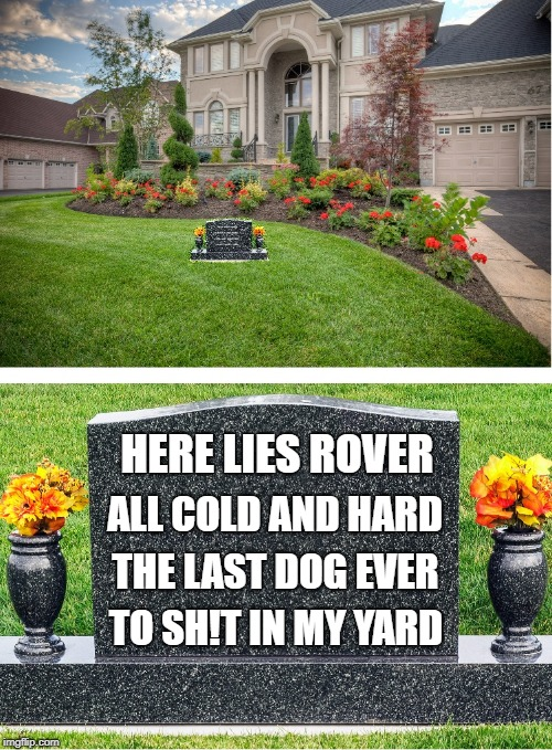 Maybe the neighbors walking their dogs will get the hint? | HERE LIES ROVER ALL COLD AND HARD THE LAST DOG EVER TO SH!T IN MY YARD | image tagged in funny memes,dogs,pets,neighbors,annoying,dog poop | made w/ Imgflip meme maker