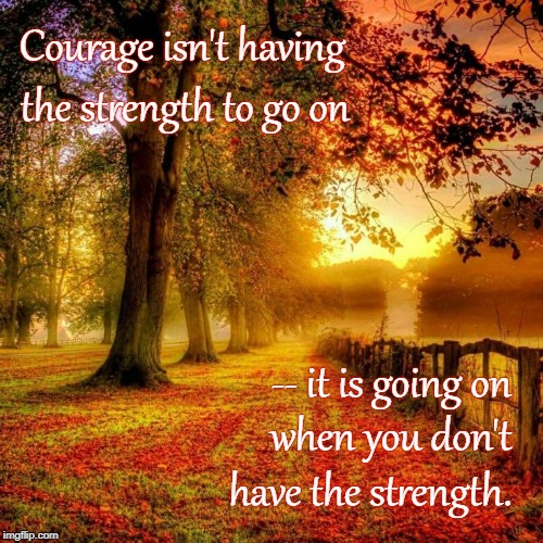 Courage to Go On | Courage isn't having have the strength. the strength to go on when you don't -- it is going on | image tagged in courage,strength,going on | made w/ Imgflip meme maker