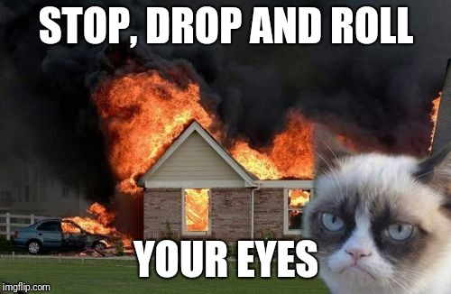 Burn Kitty Meme | STOP, DROP AND ROLL YOUR EYES | image tagged in memes,burn kitty,grumpy cat | made w/ Imgflip meme maker