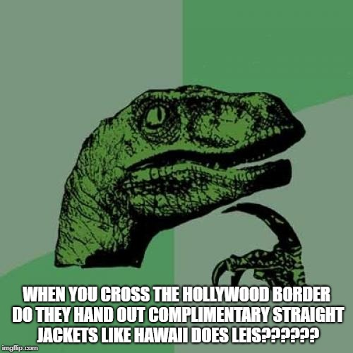 Philosoraptor Meme | WHEN YOU CROSS THE HOLLYWOOD BORDER DO THEY HAND OUT COMPLIMENTARY STRAIGHT JACKETS LIKE HAWAII DOES LEIS?????? | image tagged in memes,philosoraptor | made w/ Imgflip meme maker