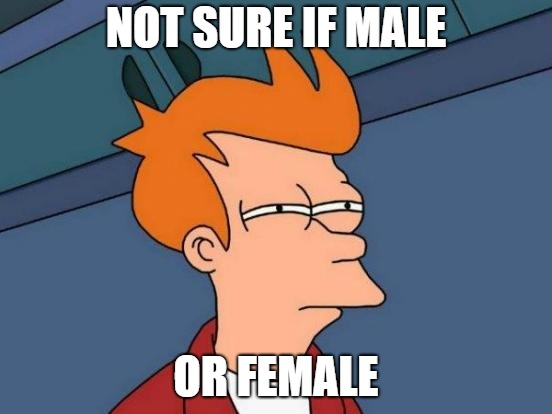 Futurama Fry Meme | NOT SURE IF MALE OR FEMALE | image tagged in memes,futurama fry | made w/ Imgflip meme maker