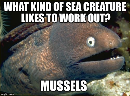 Bad Joke Eel | WHAT KIND OF SEA CREATURE LIKES TO WORK OUT? MUSSELS | image tagged in memes,bad joke eel | made w/ Imgflip meme maker