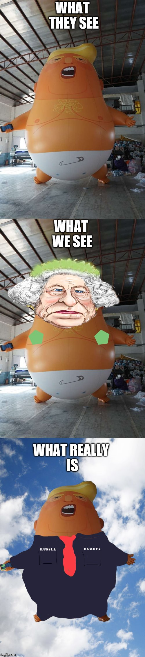 perspective dears | WHAT THEY SEE WHAT REALLY IS WHAT WE SEE | image tagged in perspective,trump,queen elizabeth,make america great again | made w/ Imgflip meme maker