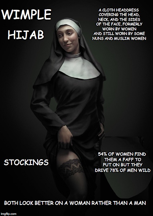 All men are not Pigs, but boy are they easy to lay. | A CLOTH HEADDRESS COVERING THE HEAD, NECK, AND THE SIDES OF THE FACE, FORMERLY WORN BY WOMEN AND STILL WORN BY SOME NUNS AND MUSLIM WOMEN WI | image tagged in strange creature,hijab,nuns,stockings,sexy women | made w/ Imgflip meme maker