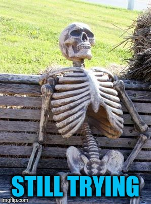 Waiting Skeleton Meme | STILL TRYING | image tagged in memes,waiting skeleton | made w/ Imgflip meme maker