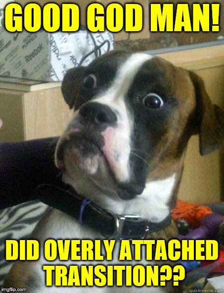 Shocked Dog | GOOD GOD MAN! DID OVERLY ATTACHED TRANSITION?? | image tagged in shocked dog | made w/ Imgflip meme maker