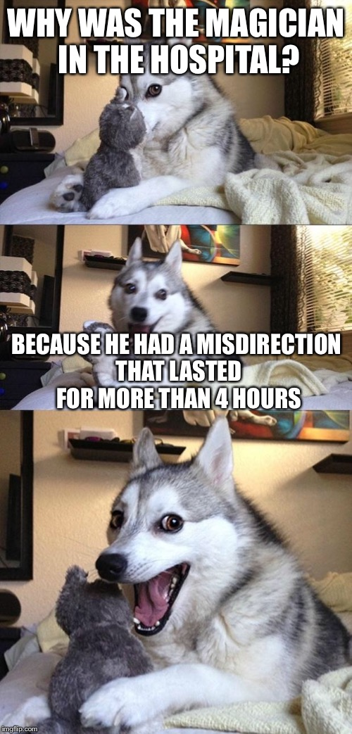 Bad Joke Dog | WHY WAS THE MAGICIAN IN THE HOSPITAL? BECAUSE HE HAD A MISDIRECTION THAT LASTED FOR MORE THAN 4 HOURS | image tagged in bad joke dog,nsfw | made w/ Imgflip meme maker