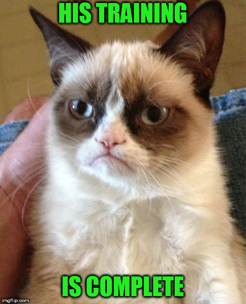 Grumpy Cat Meme | HIS TRAINING IS COMPLETE | image tagged in memes,grumpy cat | made w/ Imgflip meme maker
