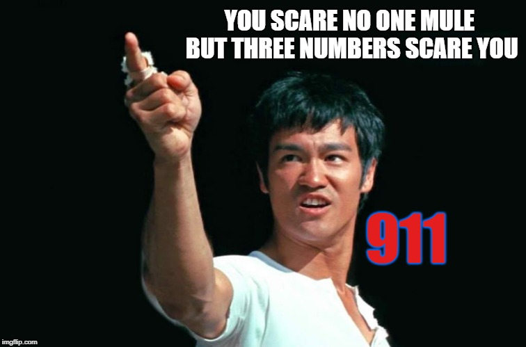 Hey Muleur | YOU SCARE NO ONE MULE BUT THREE NUMBERS SCARE YOU 911 | image tagged in bruce lee bastards,the twin towers doj top dog,ag of the w bush league,memes | made w/ Imgflip meme maker