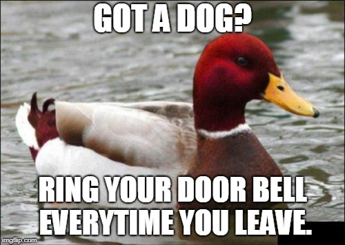 Malicious Advice Mallard | GOT A DOG? RING YOUR DOOR BELL EVERYTIME YOU LEAVE. | image tagged in memes,malicious advice mallard,AdviceAnimals | made w/ Imgflip meme maker