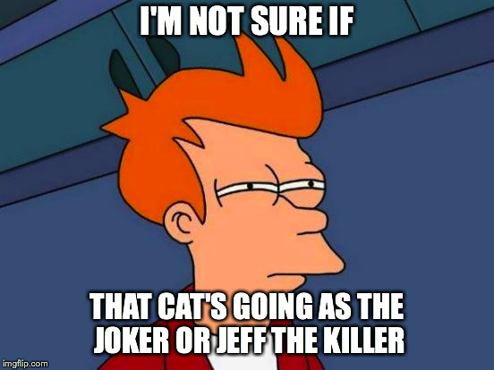 Futurama Fry Meme | I'M NOT SURE IF THAT CAT'S GOING AS THE JOKER OR JEFF THE KILLER | image tagged in memes,futurama fry | made w/ Imgflip meme maker