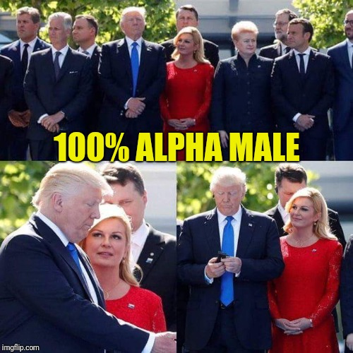 COMPLETE MADMAN!!! | 100% ALPHA MALE | image tagged in memes,donald trump,maga,nato,make america great again,croatia | made w/ Imgflip meme maker