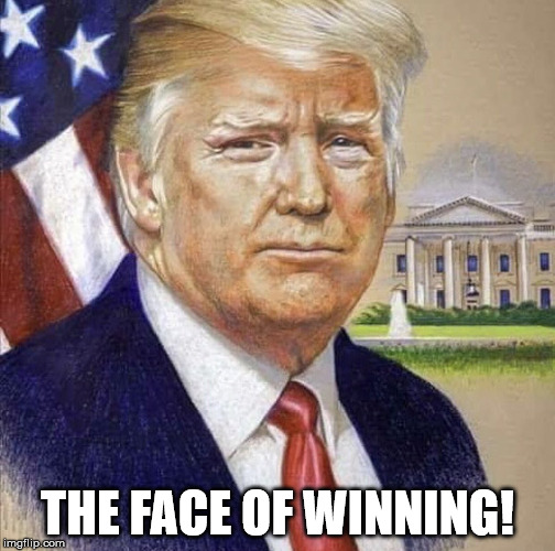THE FACE OF WINNING! | image tagged in president trump | made w/ Imgflip meme maker