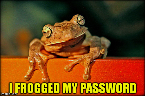 I FROGGED MY PASSWORD | made w/ Imgflip meme maker