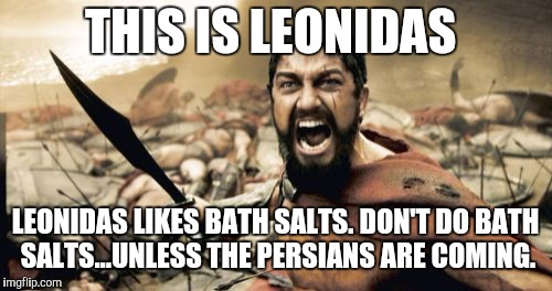 Sparta Leonidas Meme | THIS IS LEONIDAS LEONIDAS LIKES BATH SALTS. DON'T DO BATH SALTS...UNLESS THE PERSIANS ARE COMING. | image tagged in memes,sparta leonidas | made w/ Imgflip meme maker