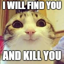 I WILL FIND YOU AND KILL YOU | image tagged in cats | made w/ Imgflip meme maker