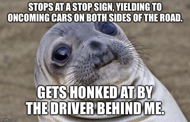 Awkward Moment Sealion Meme | STOPS AT A STOP SIGN, YIELDING TO ONCOMING CARS ON BOTH SIDES OF THE ROAD. GETS HONKED AT BY THE DRIVER BEHIND ME. | image tagged in memes,awkward moment sealion,AdviceAnimals | made w/ Imgflip meme maker