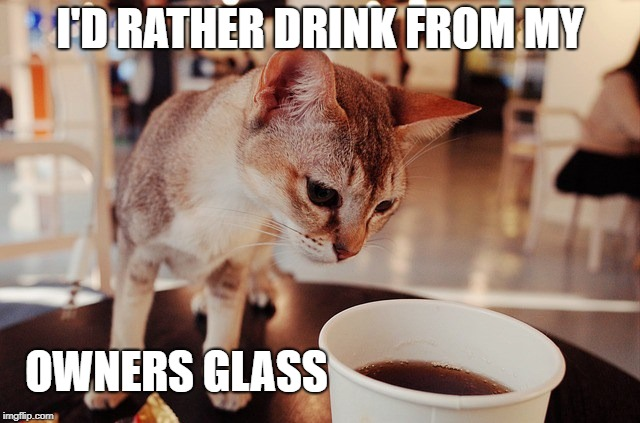 I'D RATHER DRINK FROM MY OWNERS GLASS | made w/ Imgflip meme maker
