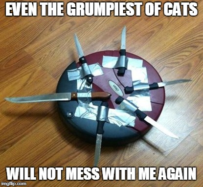 EVEN THE GRUMPIEST OF CATS WILL NOT MESS WITH ME AGAIN | made w/ Imgflip meme maker