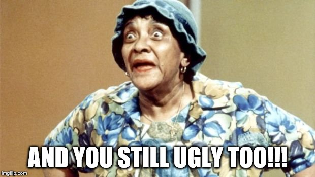 Salty Old Lady | AND YOU STILL UGLY TOO!!! | image tagged in salty old lady | made w/ Imgflip meme maker