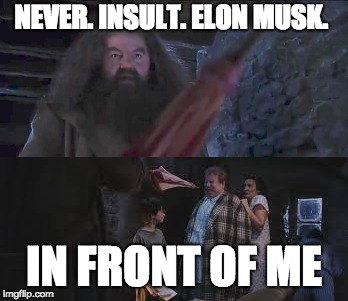 Never Insult Elon Musk  | NEVER. INSULT. ELON MUSK. IN FRONT OF ME | image tagged in elon musk,harry potter | made w/ Imgflip meme maker