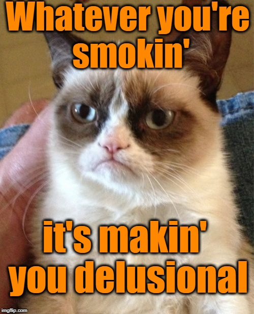 Grumpy Cat Meme | Whatever you're smokin' it's makin' you delusional | image tagged in memes,grumpy cat | made w/ Imgflip meme maker