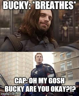 Captain America Memes Gifs Imgflip