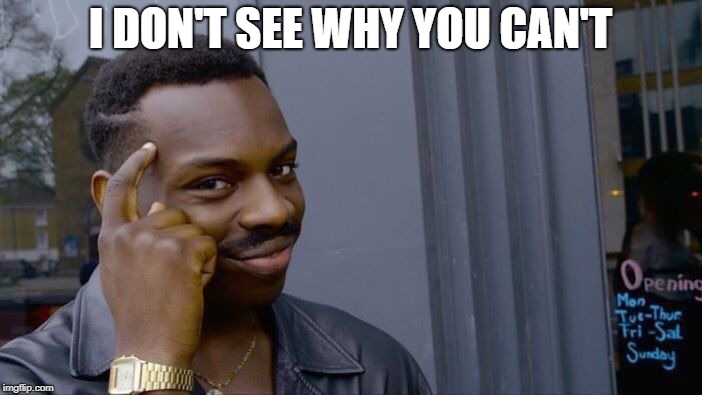 Roll Safe Think About It Meme | I DON'T SEE WHY YOU CAN'T | image tagged in memes,roll safe think about it | made w/ Imgflip meme maker