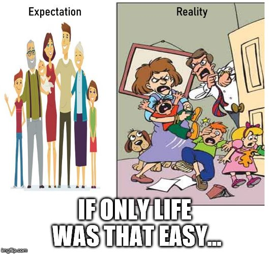 IF ONLY LIFE WAS THAT EASY... | image tagged in the reality of family life | made w/ Imgflip meme maker