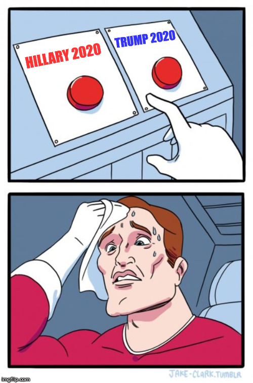 Two Buttons Meme | HILLARY 2020 TRUMP 2020 | image tagged in memes,two buttons | made w/ Imgflip meme maker